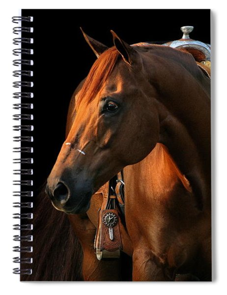 Cocoa Spiral Notebook