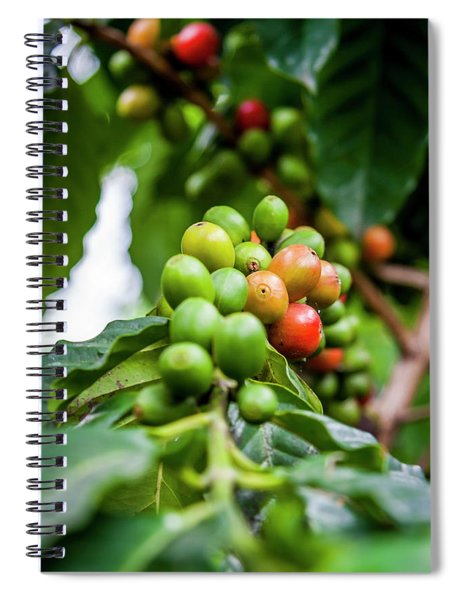 Coffee Plant Spiral Notebook