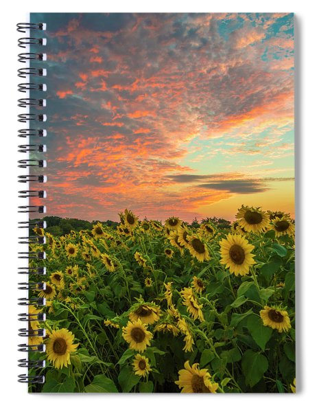 Colby Farm Sunflowers Spiral Notebook