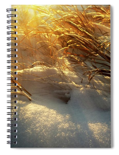 Cold Day In Alberta Spiral Notebook