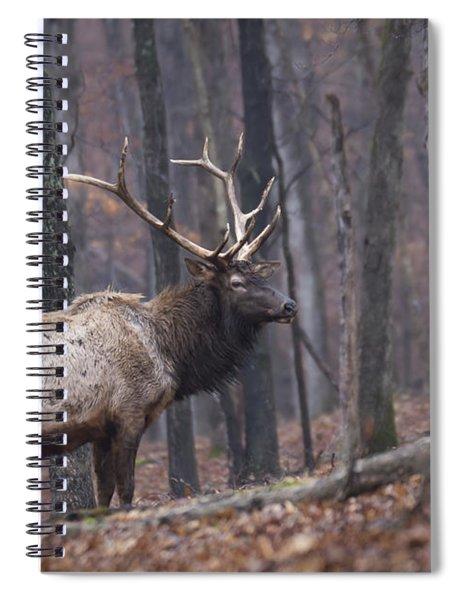 Chilly Misty Morning Spiral Notebook