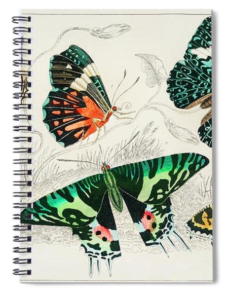 Collection Of Various Butterflies Spiral Notebook