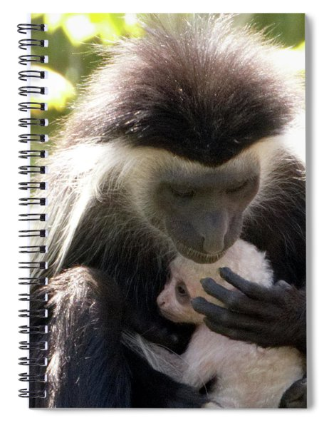 Colobus Monkey And Child Spiral Notebook