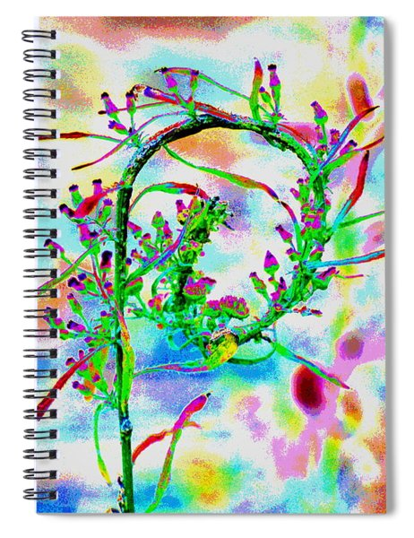 Color Curl Spiral Notebook