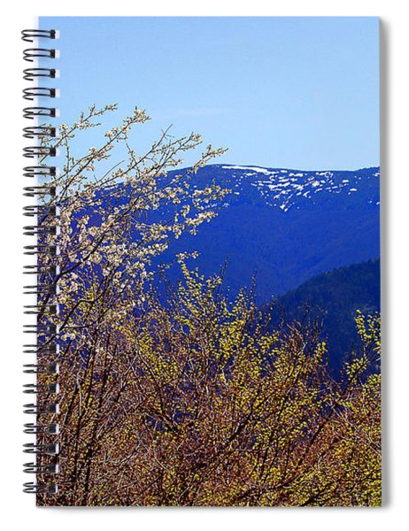 Color The World Spiral Notebook