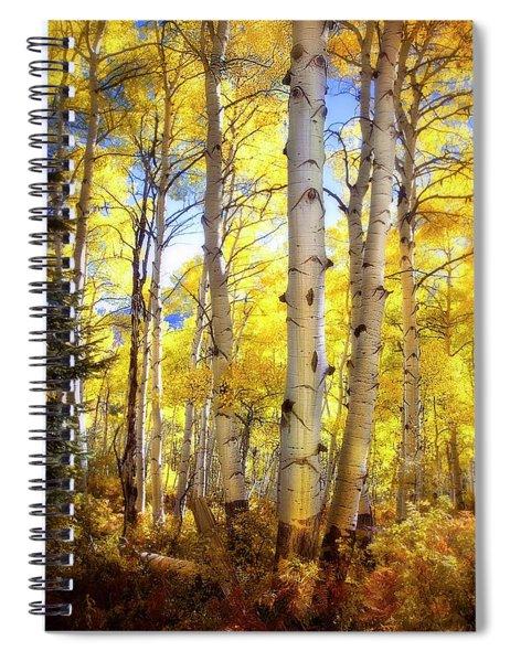 Aspen Magic   Spiral Notebook
