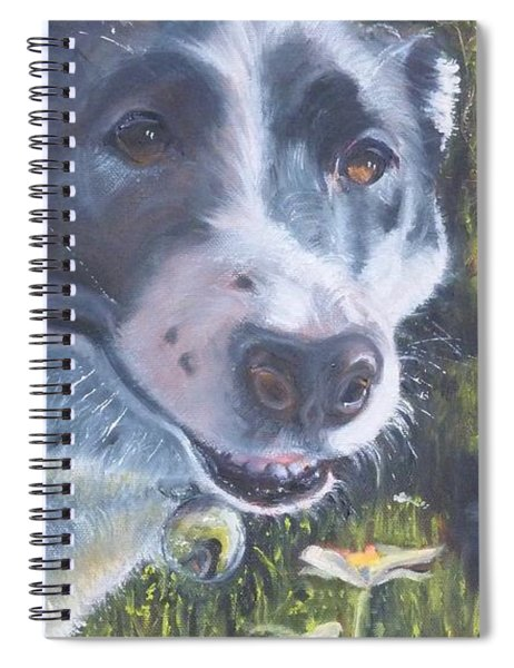 Colorado Trail Buddy Spiral Notebook