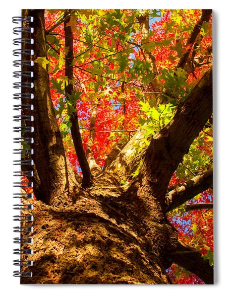 Colorful Autumn Abstract Spiral Notebook