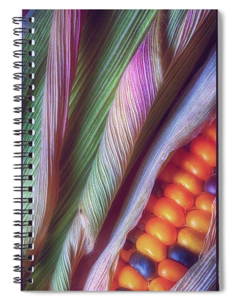 Colorful Corn Trio Spiral Notebook