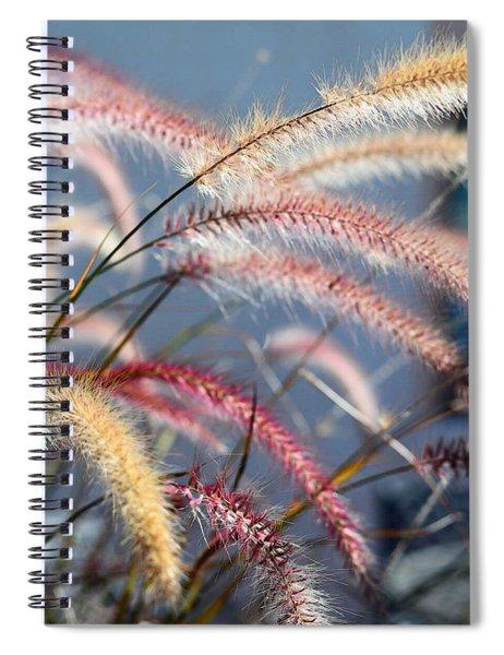 Colorful Grass Art - In The Summer Light - Sharon Cummings Spiral Notebook