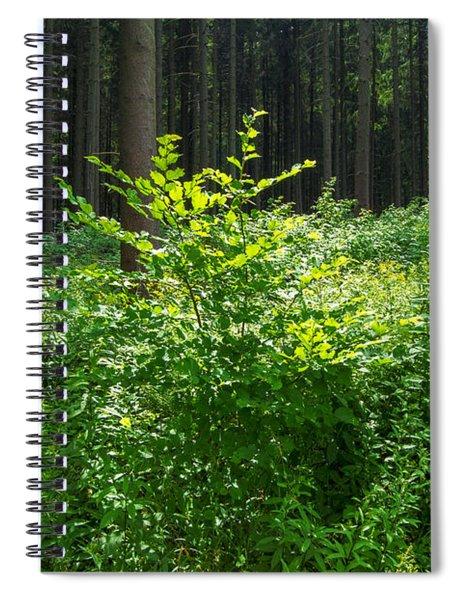 Colors Of A Forest In Vogelsberg Spiral Notebook