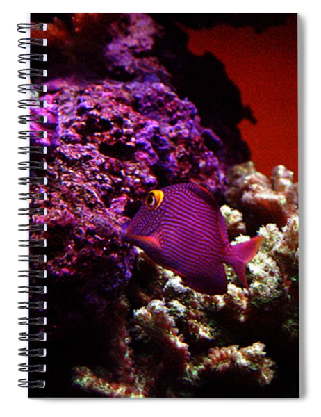 Colors Of Underwater Life Spiral Notebook