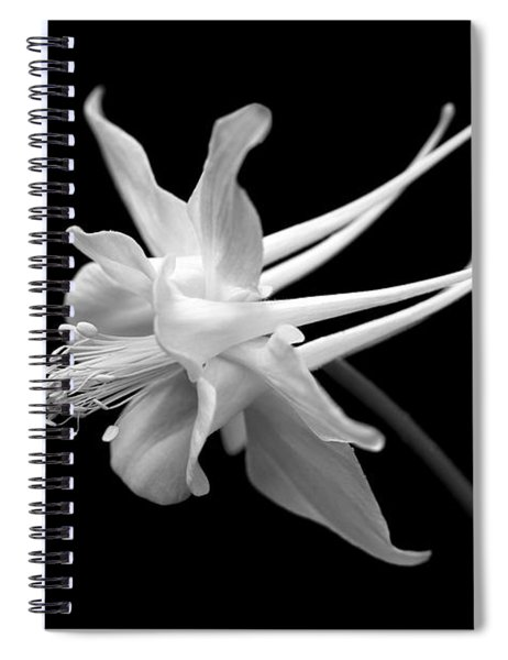 Columbine Flower Portrait Black And White Spiral Notebook