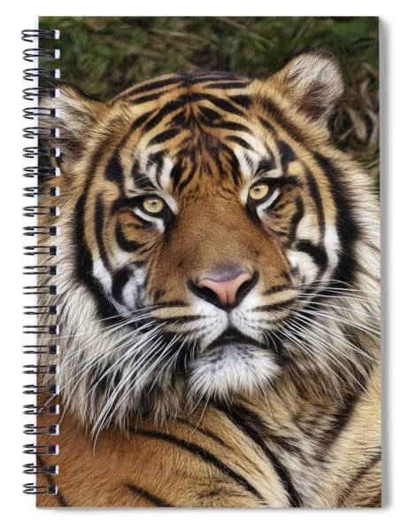 Come Pet Me Spiral Notebook