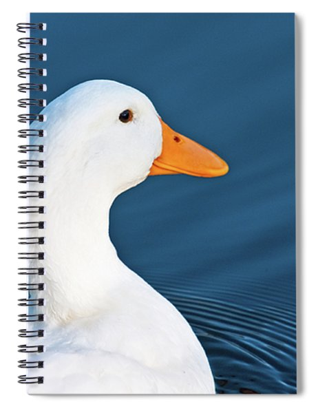 Spiral Notebook featuring the photograph Come Swim With Me by Edward Peterson