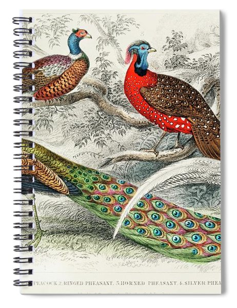 Common Peacock, Ringed Pheasant, Horned Pheasant And Silver Pheasant Spiral Notebook