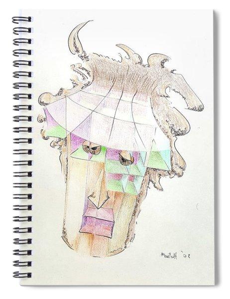 Compartment Man Spiral Notebook