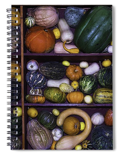 Compartments Of Gourds Spiral Notebook