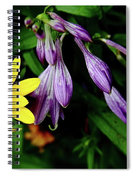 Complementary Colors Spiral Notebook