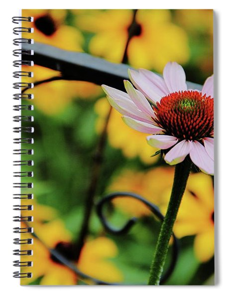Coneflower Moment For Pondering Spiral Notebook