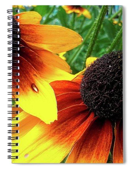 Coneflowers Spiral Notebook