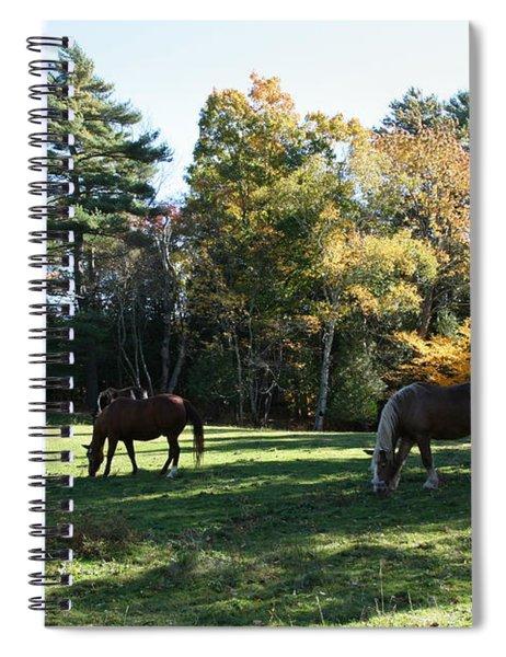 Contentment Spiral Notebook