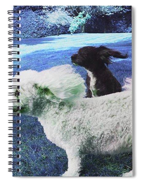 Cool Breeze In Electric Blue Spiral Notebook
