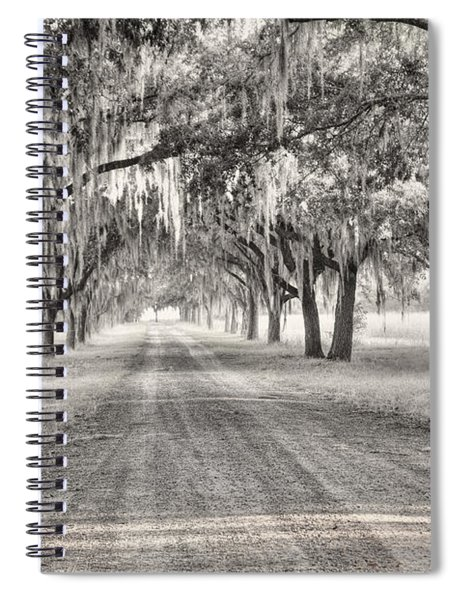 Coosaw Plantation Avenue Of Oaks Spiral Notebook