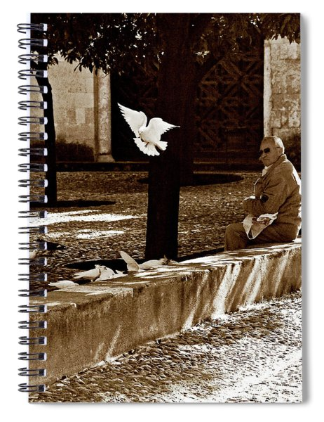Spiral Notebook featuring the photograph Cordoba Flight by Lorraine Devon Wilke