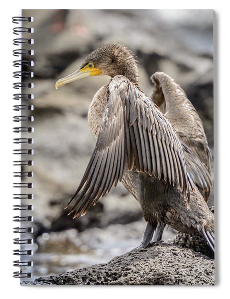 Cormorant Nsw01 Spiral Notebook