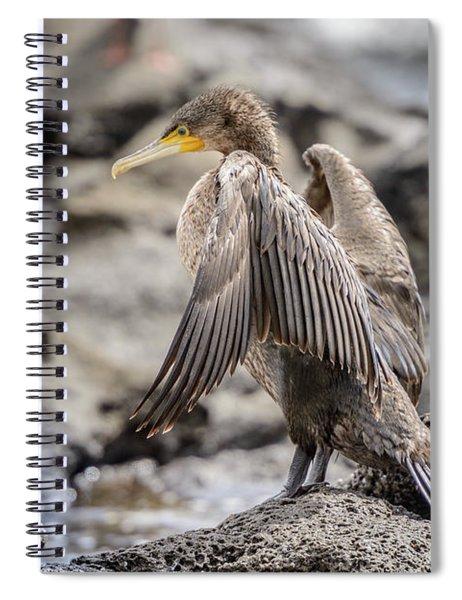Cormorant Nsw01 Spiral Notebook