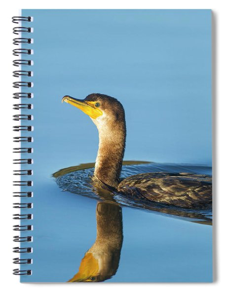 Cormorant Reflection Spiral Notebook
