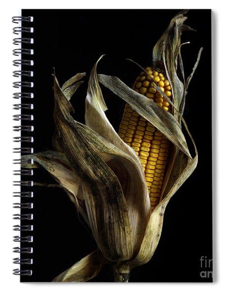 Corncob In Studio. Spiral Notebook