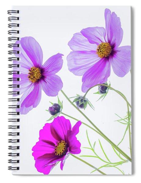 Cosmos Bright Spiral Notebook