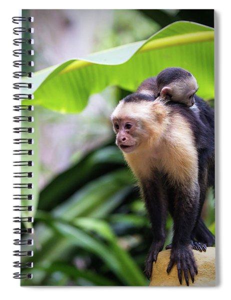 Costa Monkey Mama Spiral Notebook