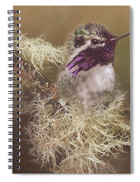 Costas Hummingbird Painted Spiral Notebook