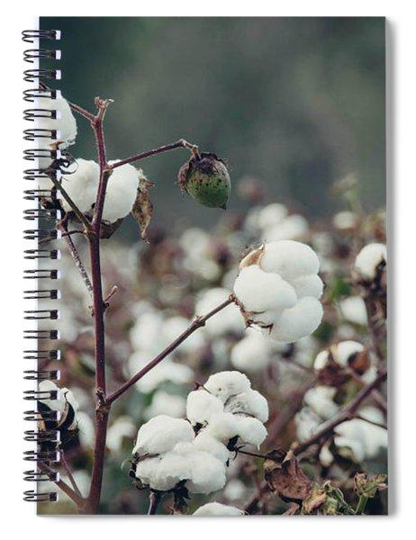 Cotton Field 5 Spiral Notebook