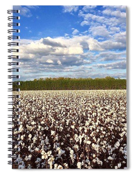 Cotton Field Spiral Notebook