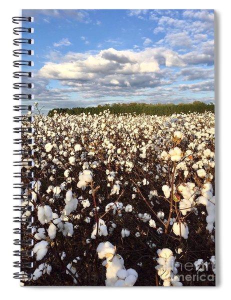 Cotton Field In South Carolina Spiral Notebook