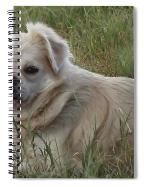 Cotton In The Grass Spiral Notebook