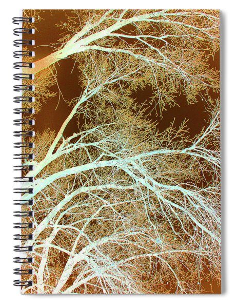 Cottonwood Conflux Spiral Notebook