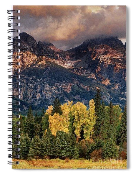 Cottonwoods Fir Trees Fall Color Grand Tetons Nat Spiral Notebook by Dave Welling