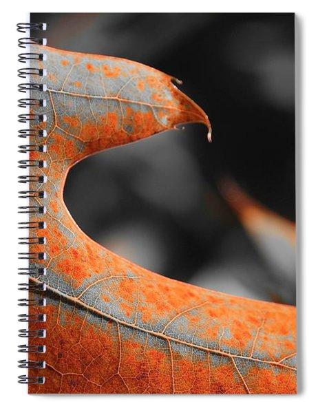 Cougar Rusty Leaf Detail Spiral Notebook