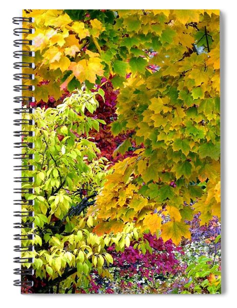Country Color 15 Spiral Notebook