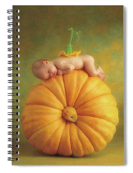 Country Pumpkin Spiral Notebook