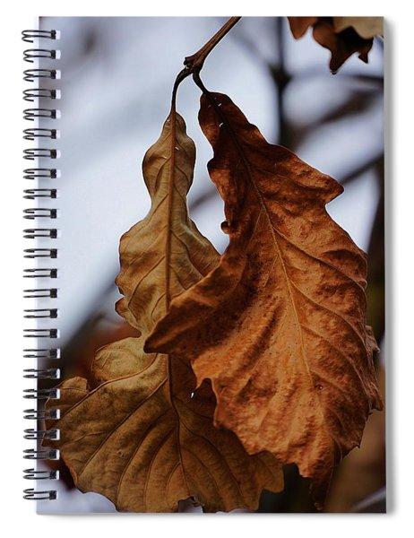 Couple Spiral Notebook