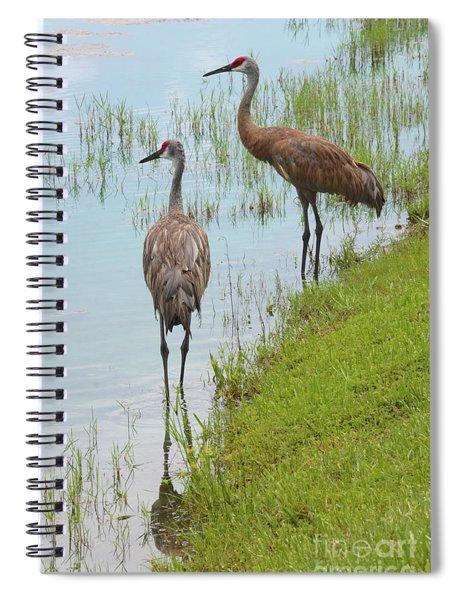 Couple Of Sandhills By Pond Spiral Notebook