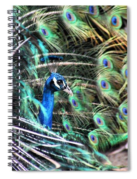 Courtship Dance Spiral Notebook