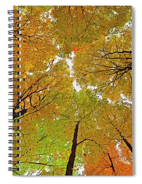 Cover Up Spiral Notebook