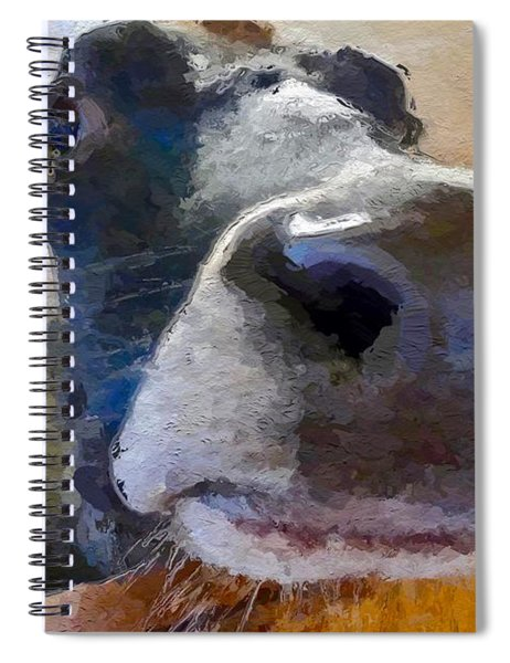 Cow Face Close Up Spiral Notebook